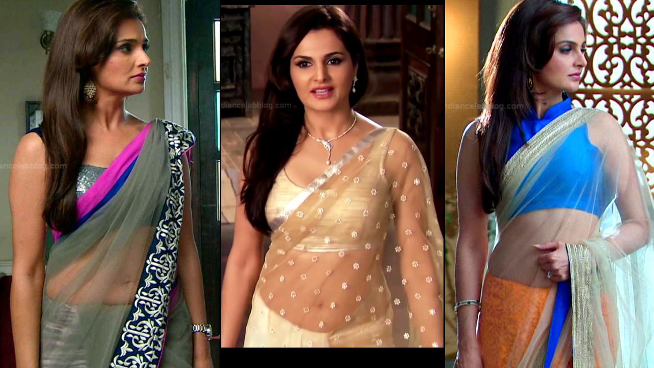 Monica Bedi Hindi Film And Tv Actress Hot Saree Photos And -7395