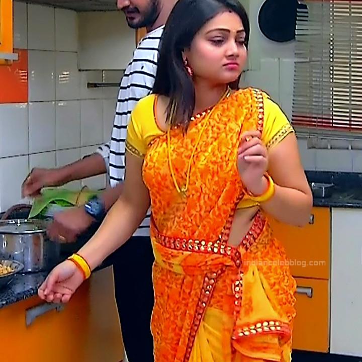 Priyanka Nalkar Tamil Serial Actress Roja S1 12 Hot Saree