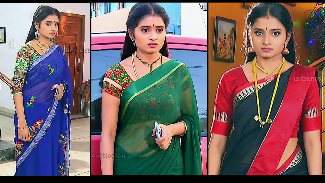 Srithika Tamil TV Actress Hot Saree Photo Gallery